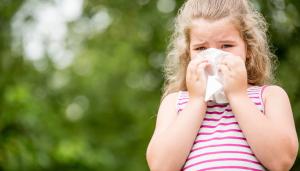 Lee más sobre el artículo Guía sobre los resfriados